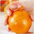 新老鼠开橙器