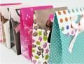 高贵精美环保购物袋/礼品袋(大)